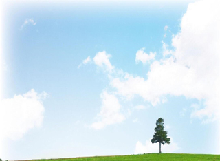 空と草原.jpg